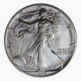 1 Oz. USA - American Eagle 1989