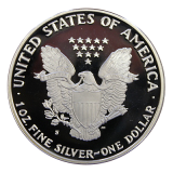 1 Oz. USA - American Eagle 1989 (Proof) - S - Originalbox + COA